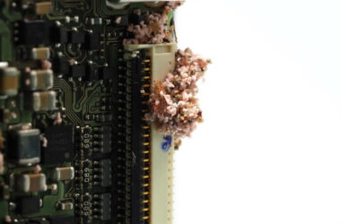 A large number of ants inside an electronic appliance